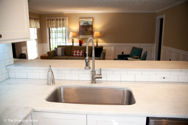 Large rectangular, stainless steel sink topped with an arched 18 inch tall flexible sprayer.