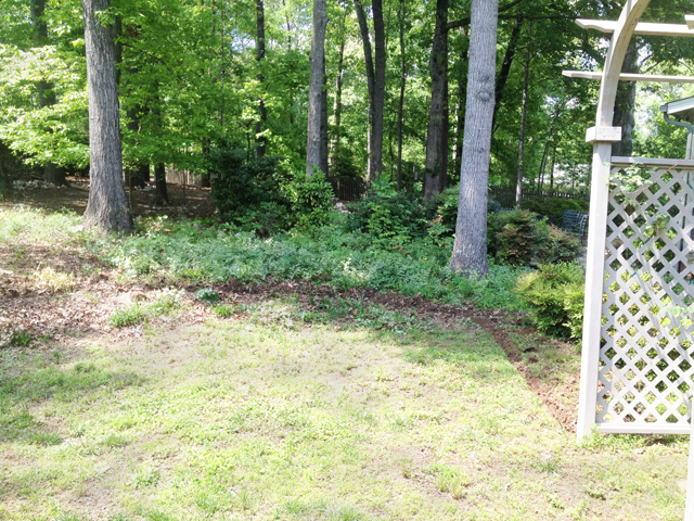 Back yard border between two homes. Heavily wooded area just beyond property line