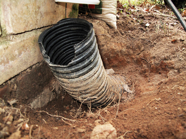Broken end of flexible drain pipe with soil removed from around it