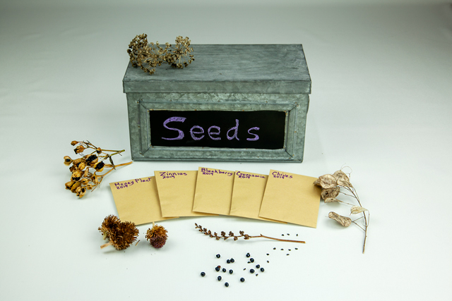 Small, grey, metal box sets behind seed packets prepared for storage