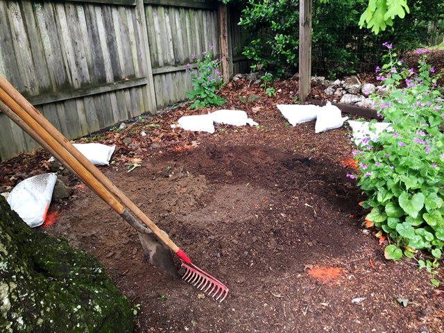 Raking soil from the area where flagstone will be laid