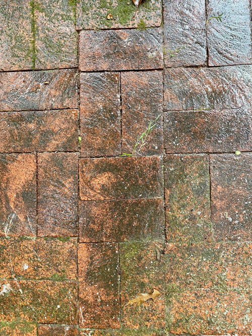 closeup of dark, weathered brick patio