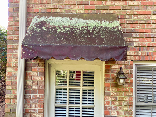 lichen is removed on edges of awning