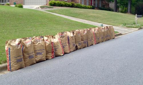 leaves in brown bags at curb
