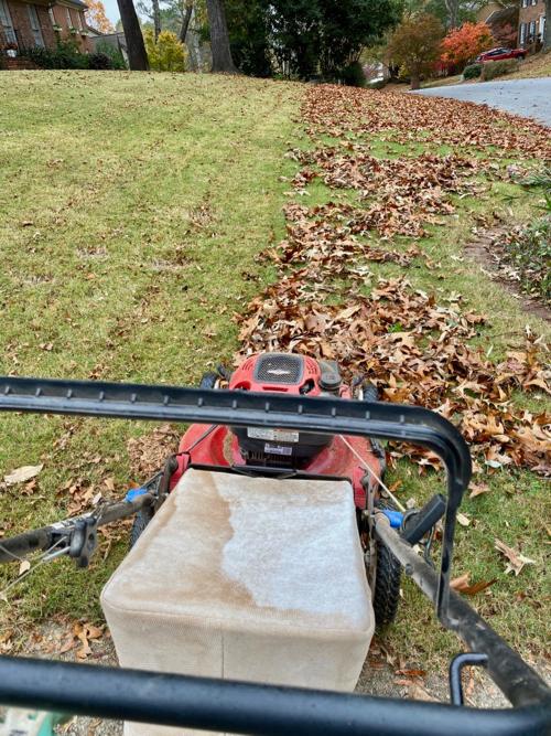 mower_mulching_leaves