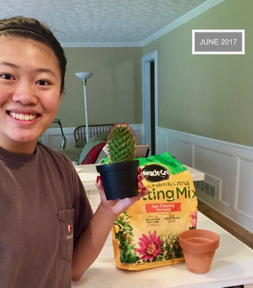 smiling girl holds a small cactus