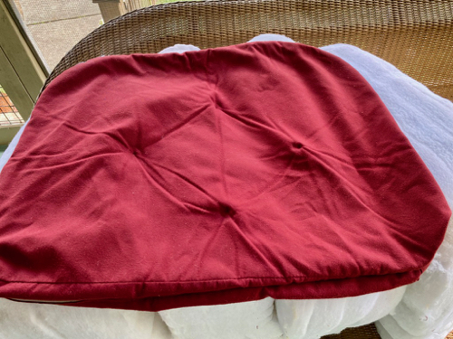 Twenty-plus year old cushion after washing